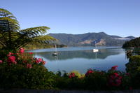 Marlborough Sounds - Te Mahia